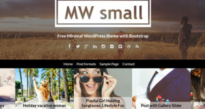 MW Small PRO v1.0.3 – Minimal & Personal WordPress Blog Theme